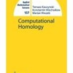 Computational Homology
