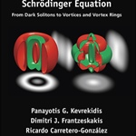 Review of The Defocusing Nonlinear Schrödinger Equation