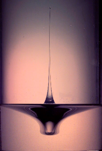 Singularity dynamics on fluid surface